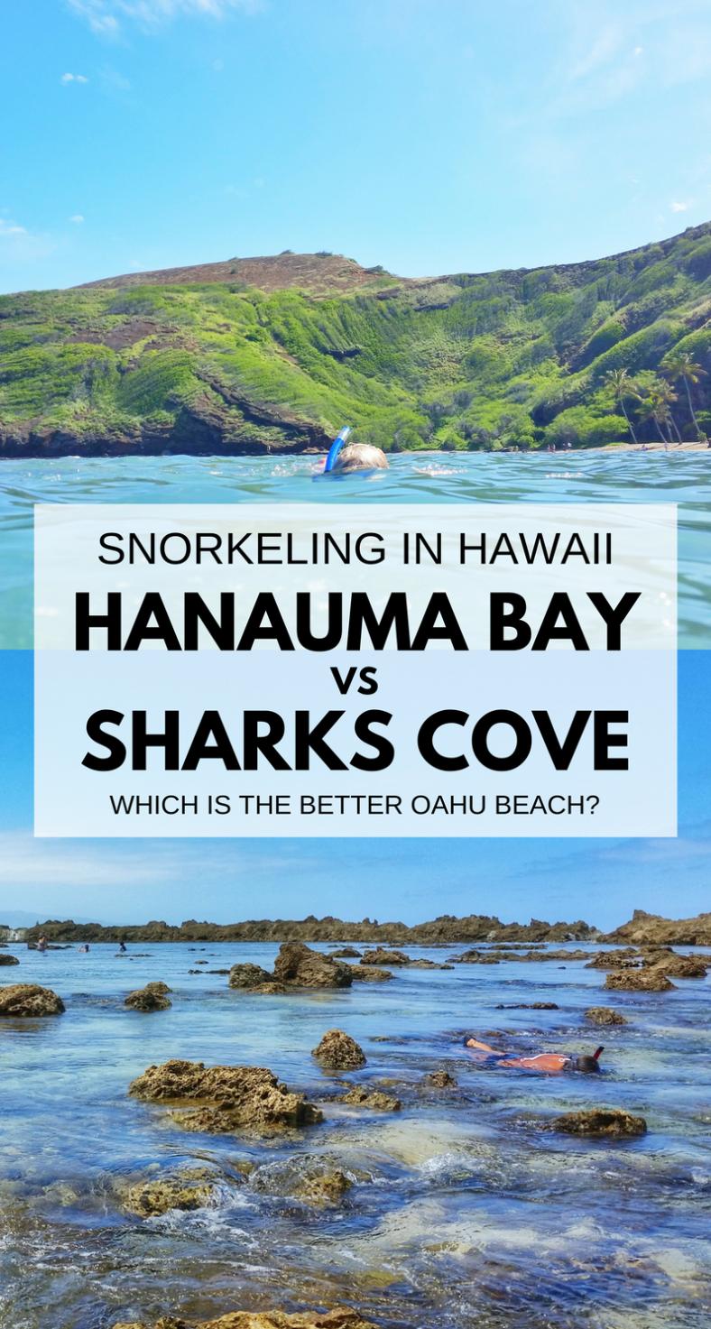 Hanauma Bay Vs Shark's Cove :: Snorkeling Oahu Hawaii