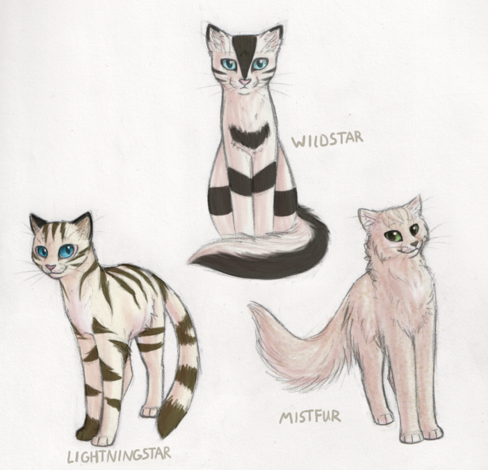 Cute Warrior Cat Drawingsgilgit Skardu Baltistan La Guerre Des
