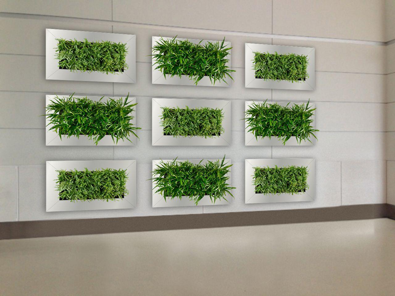 Framed Wall Planter Indoor Vertical Garden Suite Plants 400 x 300