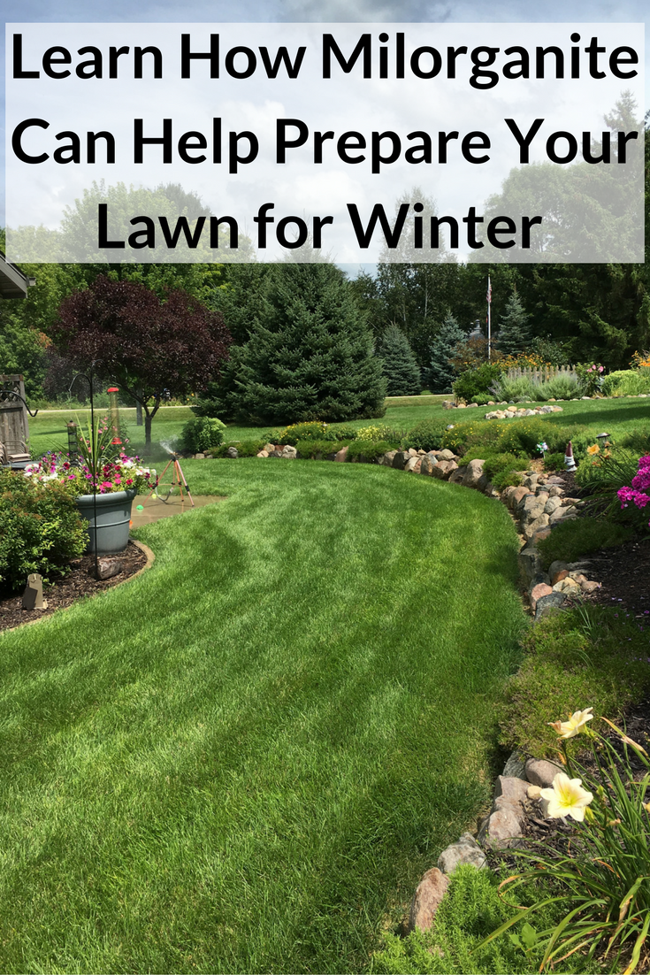 Prepare Lawn For Winter when applying milorganite in late fall, you're not feeding the
