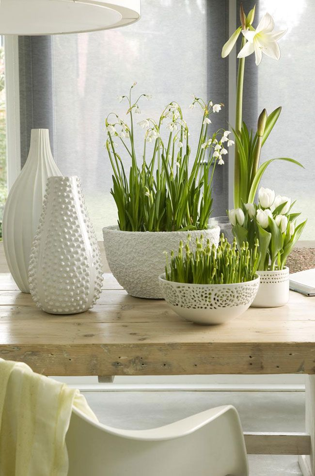 Spring Decor Ideas Home Bulbs White Vases Tulips Centerpiece