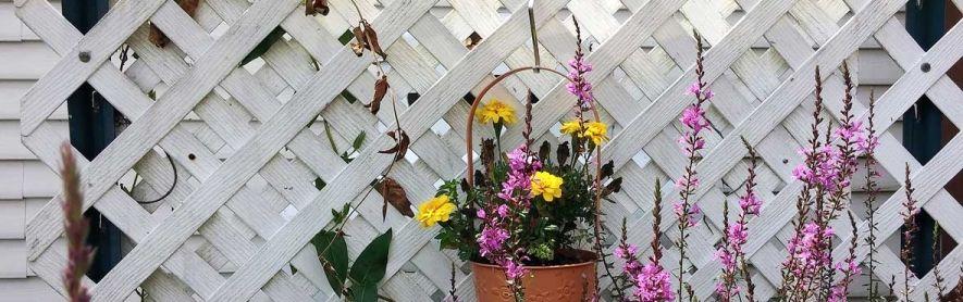 Sichtschutz für Garten, Balkon und Terrasse #sichtschutzfürbalkon