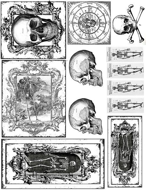 Skeleton Printables For Halloween  Halloween Labels -7052