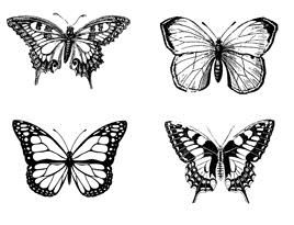 Image result for b Line Designs butterfly beauties cube