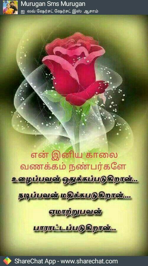 Pin By Durai Raj Uc On Good Morning Good Morning Wishes Photo Album Quote Morning Wish