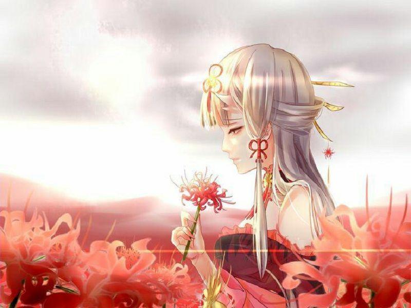 Photo of Bộ sưu tập hình ảnh hoa bỉ ngạn Anime đẹp nhất