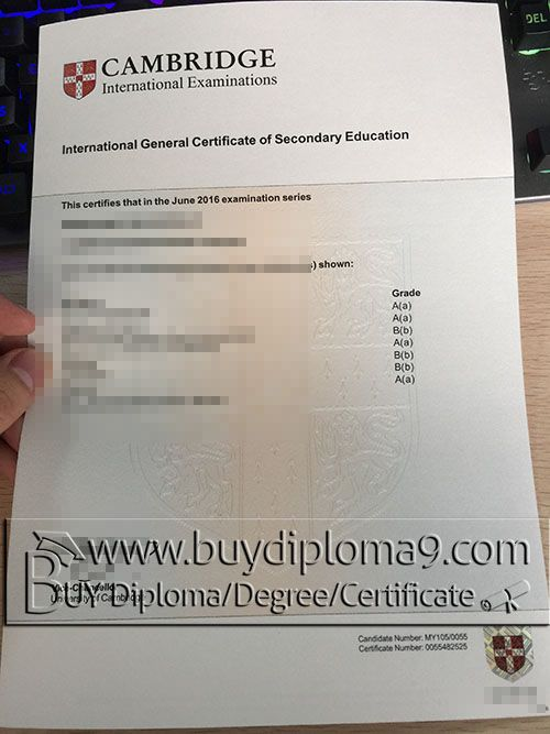 Igcse cambridge buy diploma buy college diploma buy for Gcse certificate template