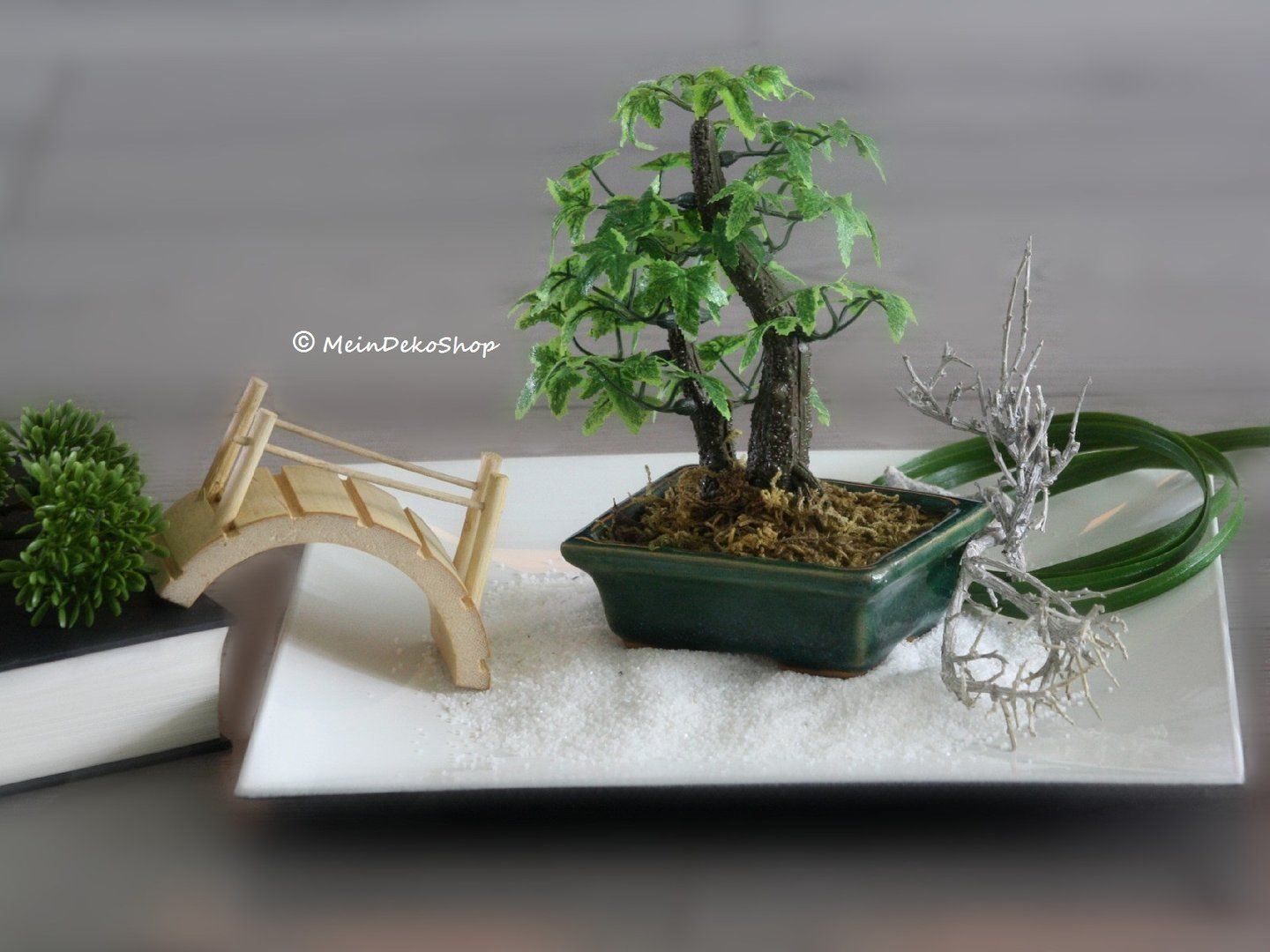 mini bonsai im dunkelgr nen keramikt pfchen f r zen. Black Bedroom Furniture Sets. Home Design Ideas
