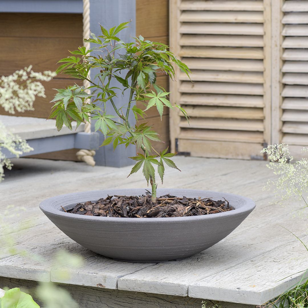 Varese Low Bowl Planter   Stewart Garden