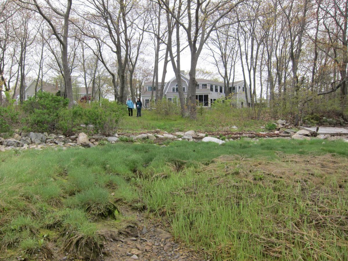 Landscaped Homes natural landscaped homes - google search | natural landscaped