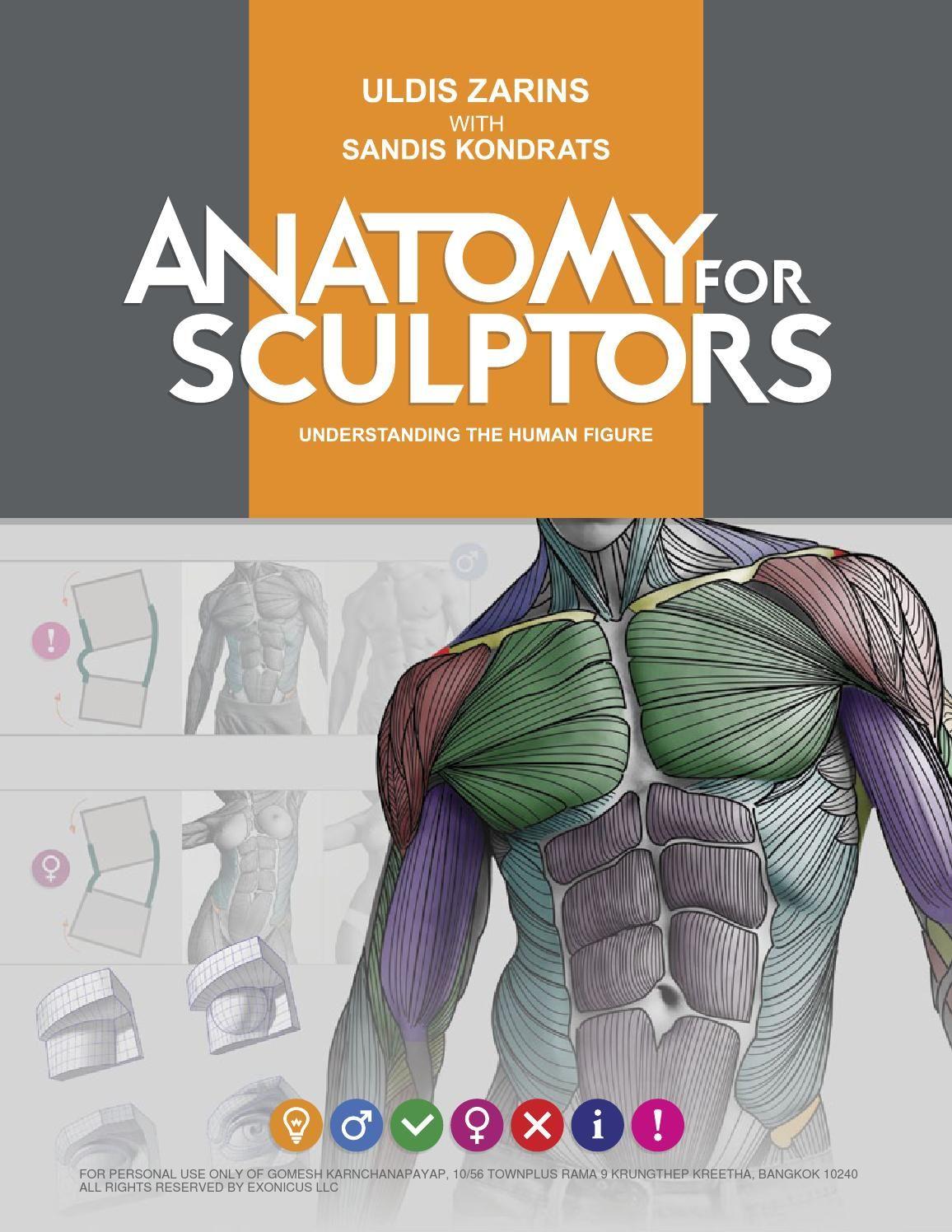 ANATOMY FOR SCULPTORS | Anatomy | Pinterest | Zeichnungen