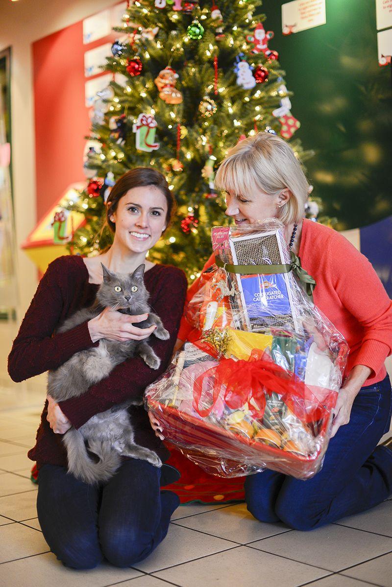 Should You Get a Pet for Christmas? Pets, Nashville, Human