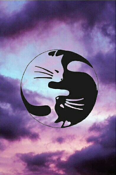 Yin Yang Tumblr Iphone Wallpaper