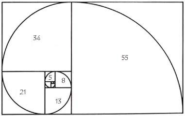 Image result for fibonacci number scroll