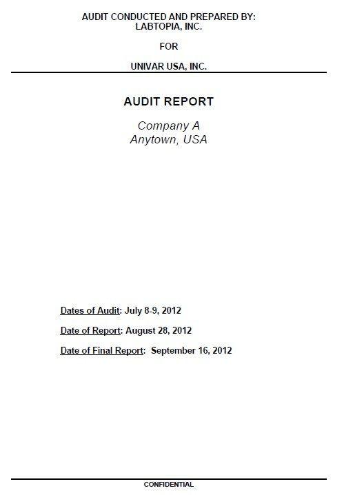 10+ Audit Report Templates | Free Printable Word & PDF ...