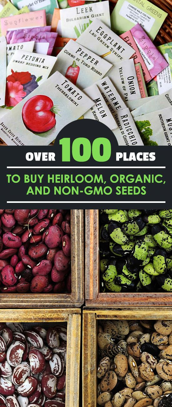 Over 100 Places To Heirloom Organic And Non Gmo Seeds