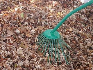 Leaf Picker Upper Easy On The Back Leaf Picker Upper Garden Tools Rake
