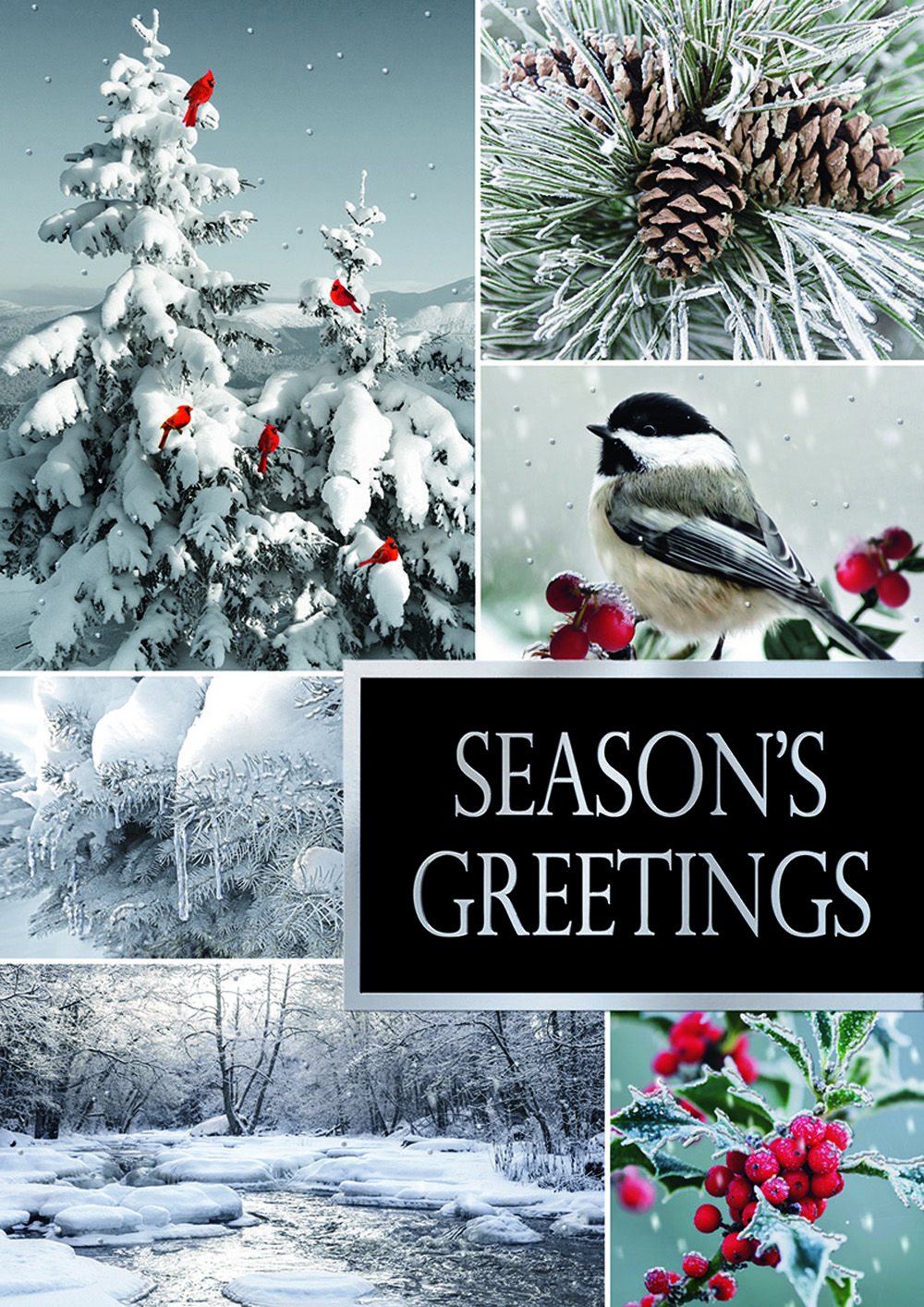 Winterland Holiday Cards with Chickadee and Carindals! https ...