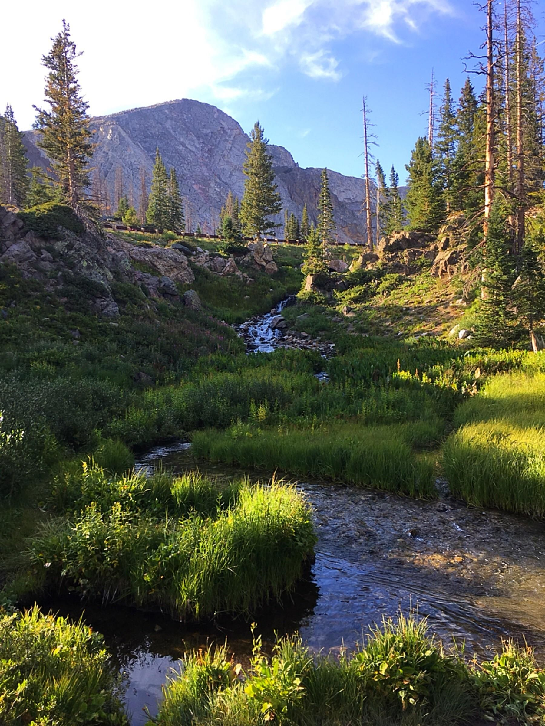 Medicine Bow National Forest Wyoming Near Lake Marie Elevation