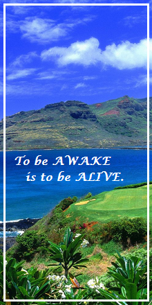 To be awake is to be alive.