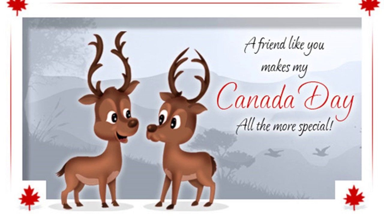 Canada day greeting canada day funny greetings day