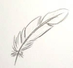 Dessin Plume Facile In 2019 Feather Drawing Flower Sketch