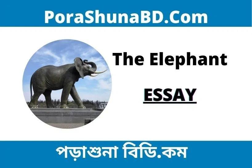 The Elephant Essay Porashuna Bd In 2020 Male An On