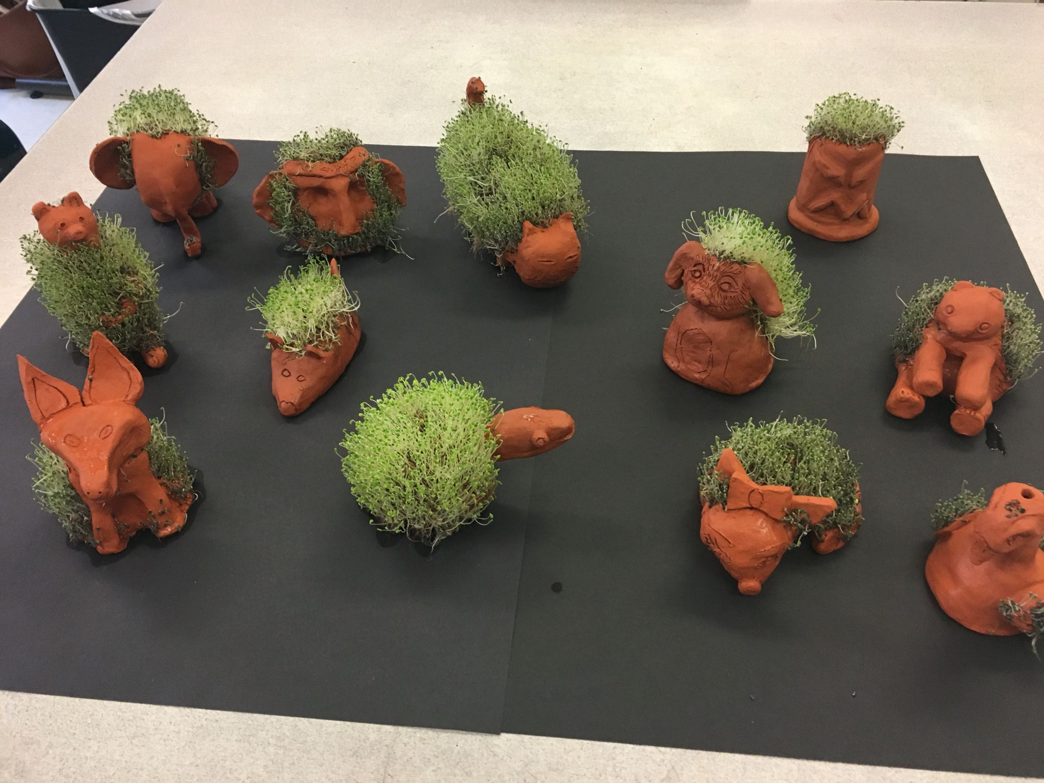 Clay Chia Pets Art Project Middle School Macetas Educasion Y Manualidades