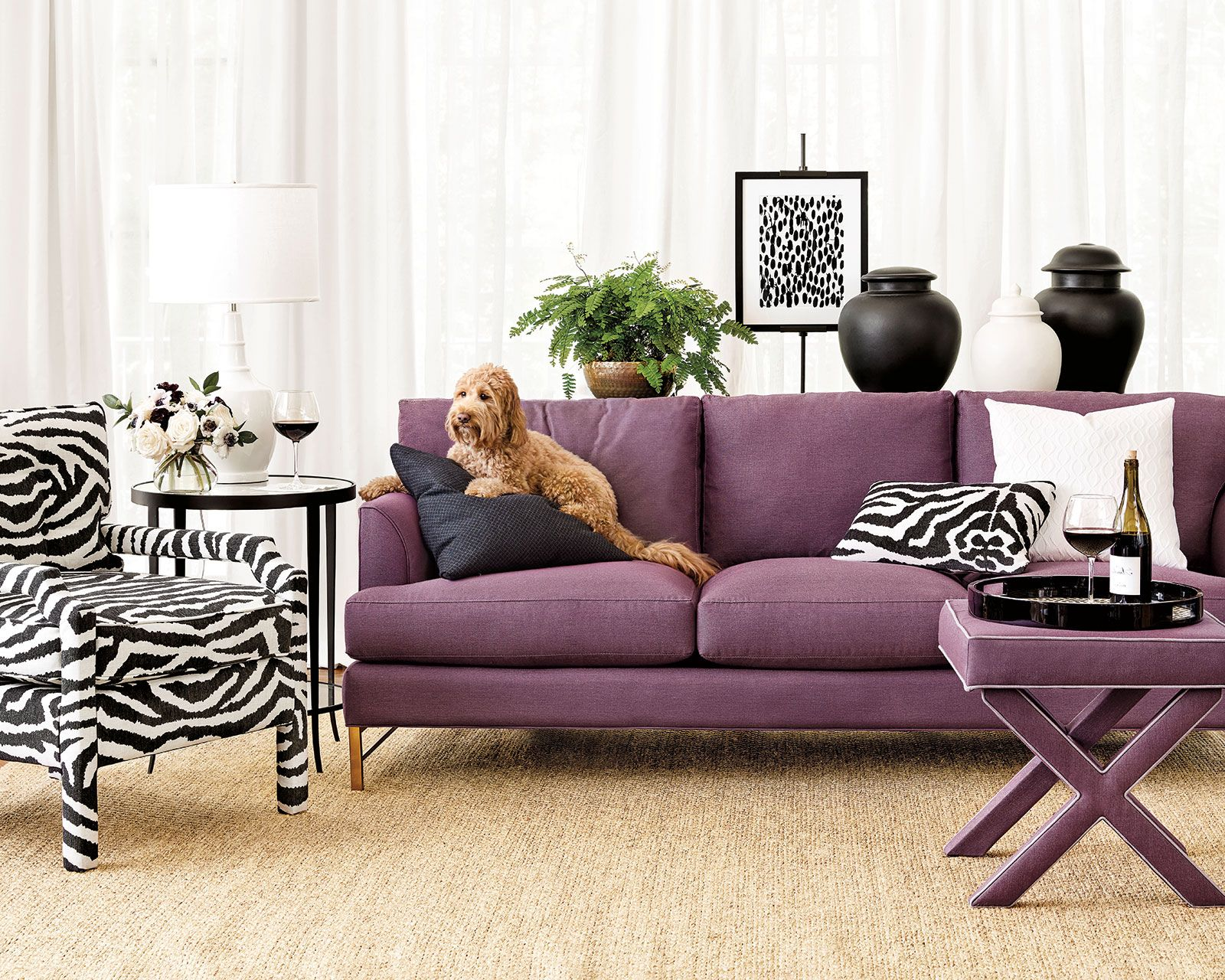 Surprising Best Sofas For Dogs For The Home Cool Couches Best Sofa Creativecarmelina Interior Chair Design Creativecarmelinacom