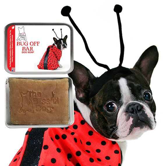 Gentle Touch Dog Soap For Puppies Sensitive Dogs Featuring Great
