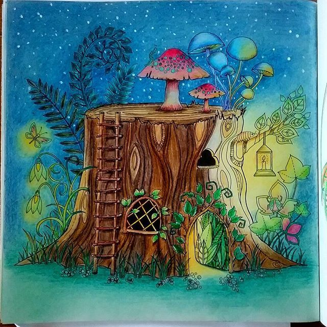 Johannabasford Livredecoloriage Jardinsecret Secretgarden Fairies Flowers Colorful Illustration Coloringbook Enchantedforest Foretenchantee