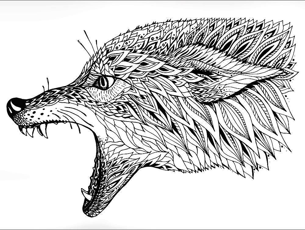 WOLF HEAD HARD COLORING PAGE FOR ADULTS Follow