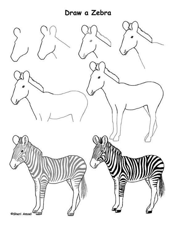 J Apprends A Dessiner Dessin Facile Animaux Zebre Dessin