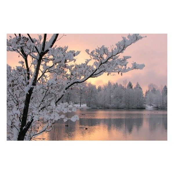 Winter pastels ❤ liked on Polyvore