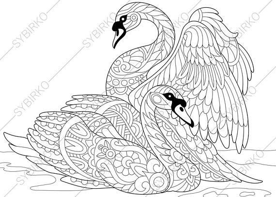 Bird Swan Birds Adult Coloring Book