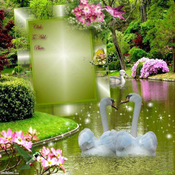 Spring Love Romantic Picture Frames Romantic Frame Studio Background Images