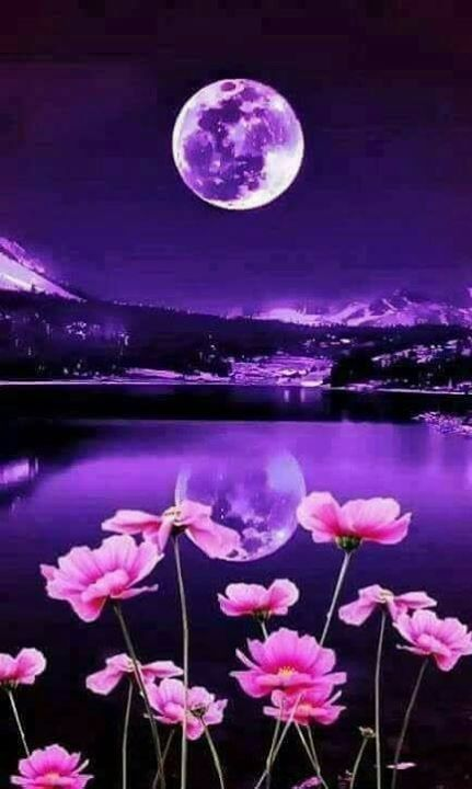 Good night moon moon beautiful moon moon pictures nature - Good night nature pic ...