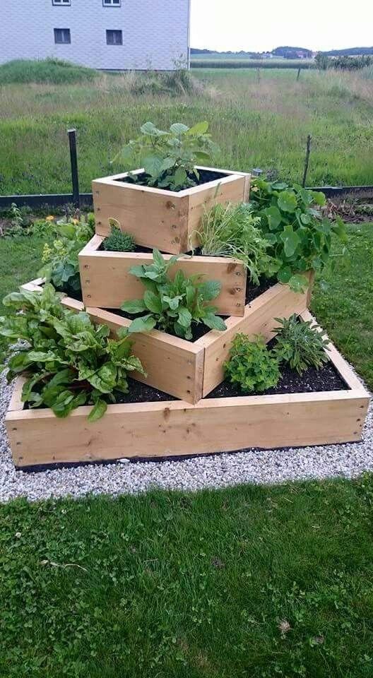Kr uterbeet dekotipps pinterest kr uterbeet g rten for Gartenbeet modern