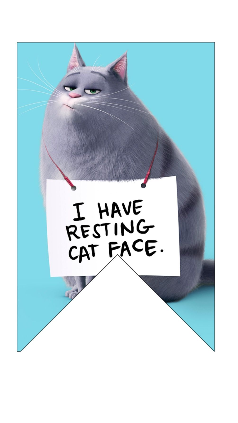 Pin By We Love Montessori On The Secret Life Of Pets Party Animal Party Cat Face Secret Life Of Pets