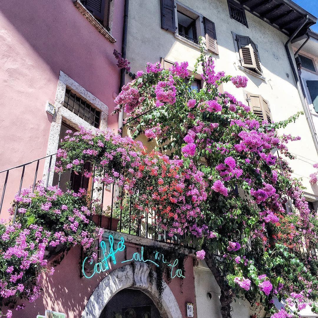 "🍋 Limone sul Garda, Italia🇮🇹 #vsco #vscocam #italian_places #italiainunoscatto #vscogood…"""