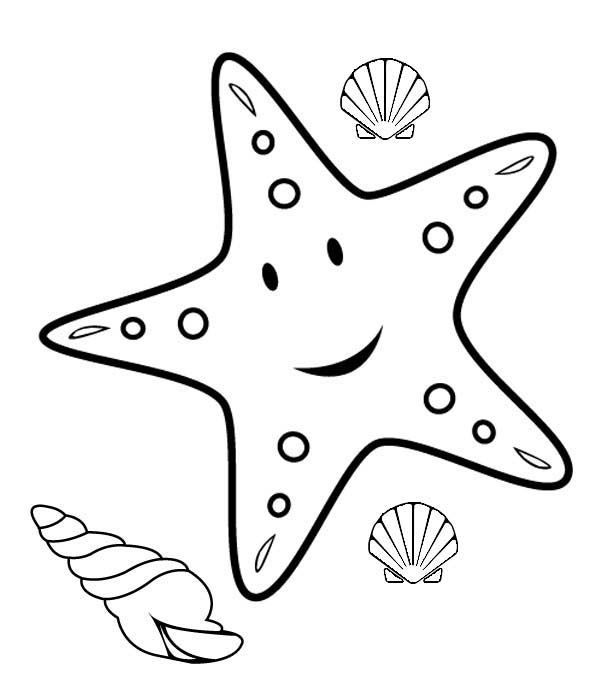 How To Color Starfish Coloring Sheet Pages For Kids Funnycrafts