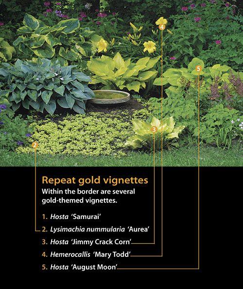 gold shade garden