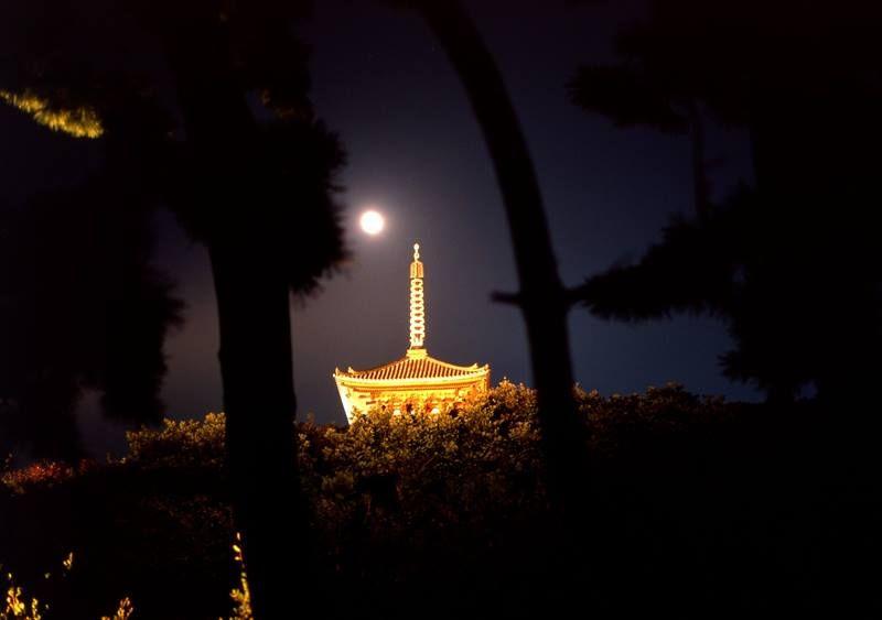 Tsukimi - Moon viewing in Japan