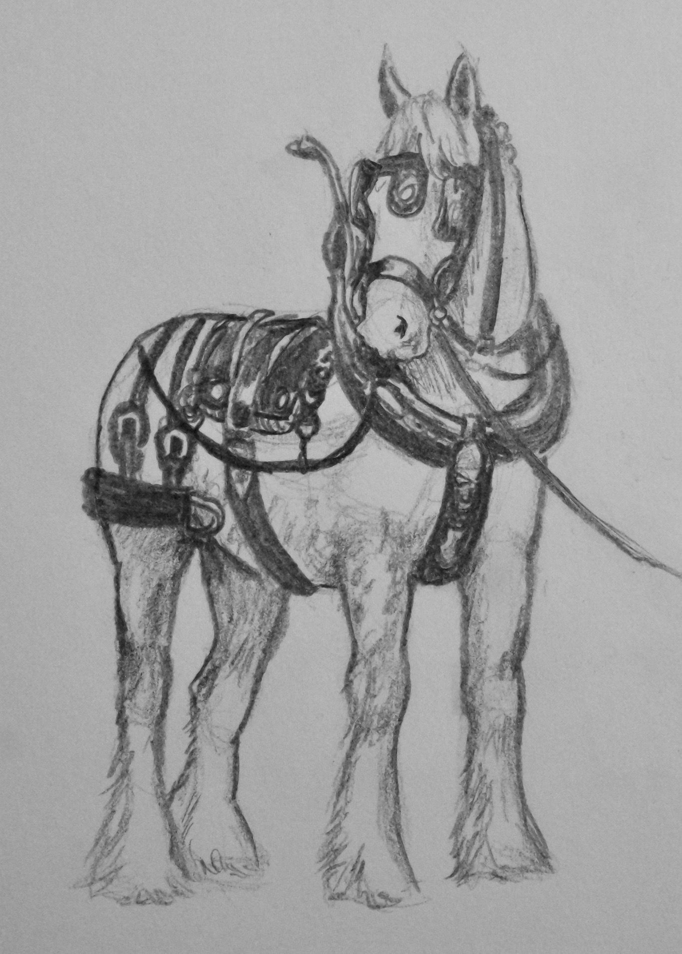 Draft Horse In Harness Pencil Drawing By Hannah Thuemmel 2017 Horse Art Drawing Horse Drawings Horse Drawing [ 1911 x 1366 Pixel ]