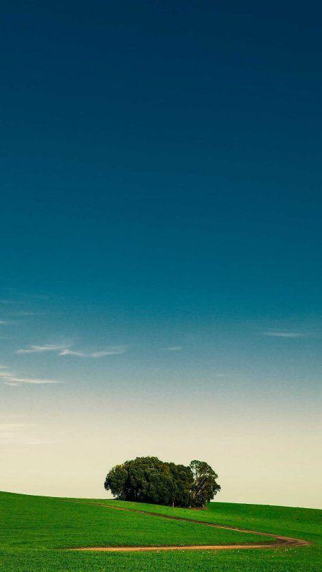 Avengers Endgame Thanos Vs Galactus Iphone Wallpaper In 2020 Iphone Wallpaper Sky Nature Wallpaper Nature