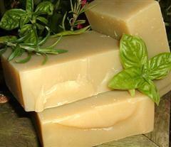 Nettle Organic Herbal Shampoo Bar