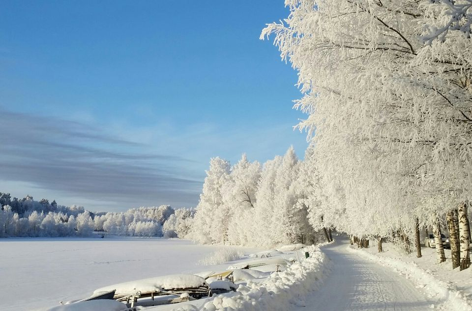 ***Winter road (Finland) by Pekka Arikoski/Kuopio🏳