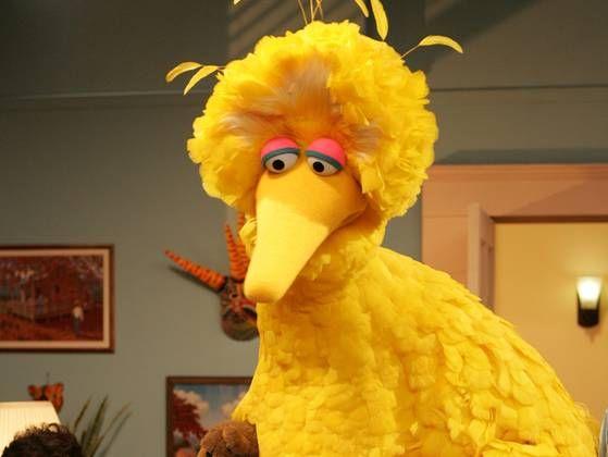 Romney S Big Bird Comment Stirs Social Media Big Bird