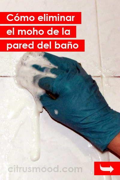 C mo eliminar el moho de la pared del ba o casa limpia pinterest - Como limpiar las paredes del bano ...