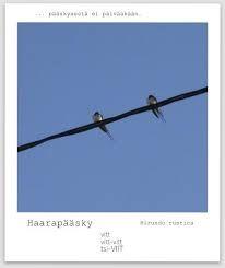 Kuvahaun tulos haulle lintu pääsky kuva